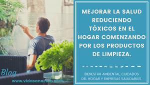 Lee más sobre el artículo Mejora tu salud reduciendo tóxicos en el hogar.