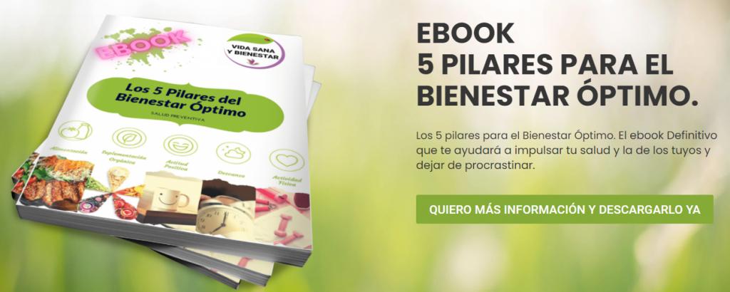 EBOOK OS 5 PILARES DEL BIENESTAR OPTIMO